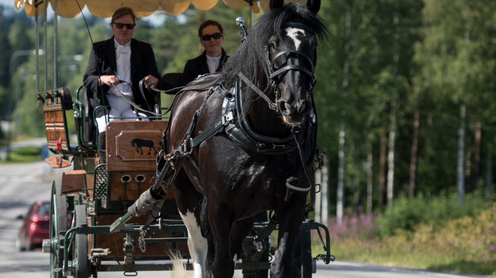 Lukkarilan hevospalvelut hevosvankkuri kulkee maantiellä