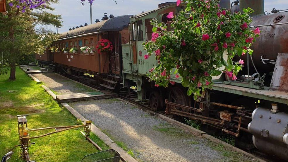 junamajoitus haukka juna kesällä