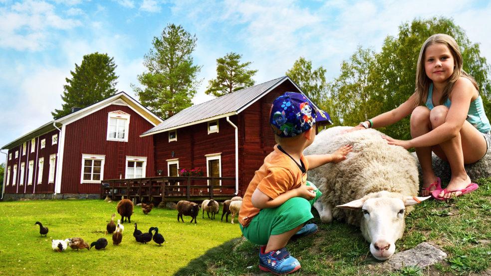 Wanha Markki edusta lampaita
