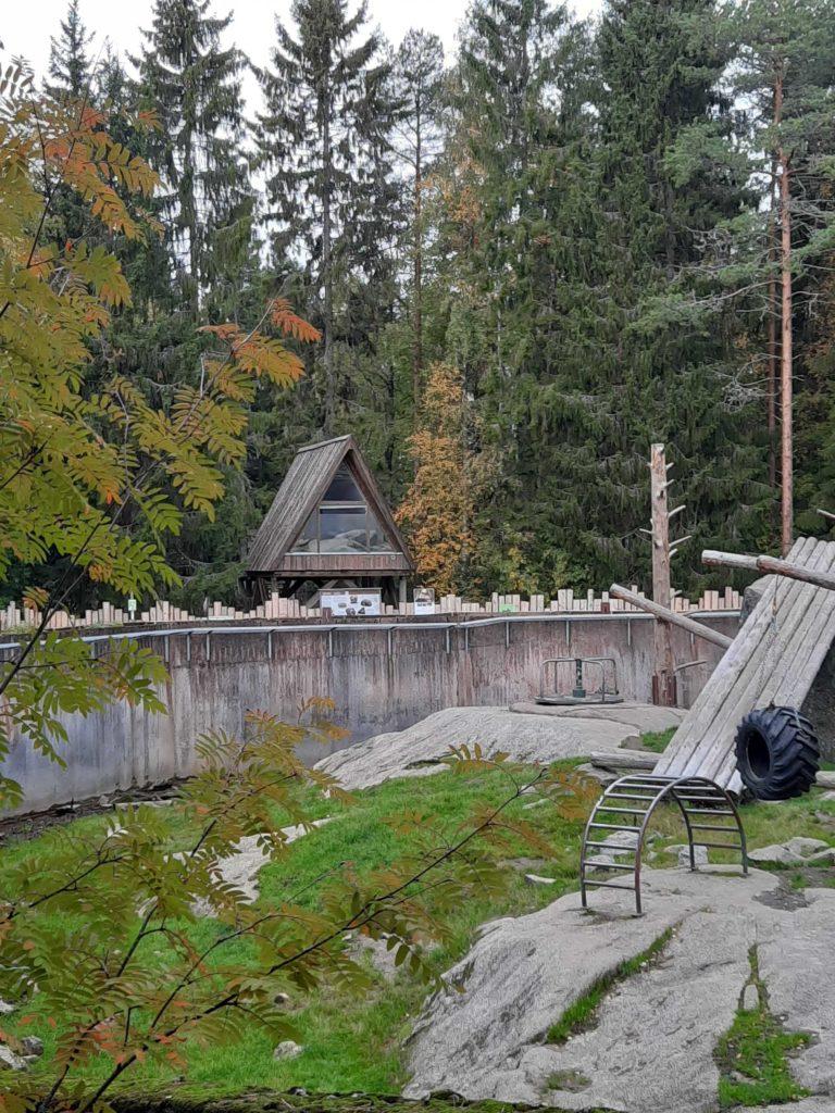 Villa Ursuksesta on upeat näkymät karhulaan.