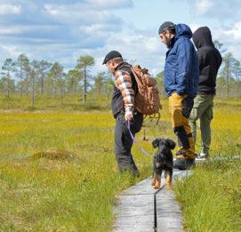 Lauhanvuori - Hämeenkangas UNESCO Global Geopark visit_lakeus koira mukana retkellä